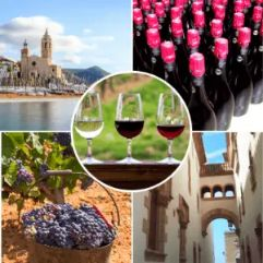 Private Sitges and Wine Tour