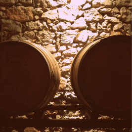 Barrels in Priorat