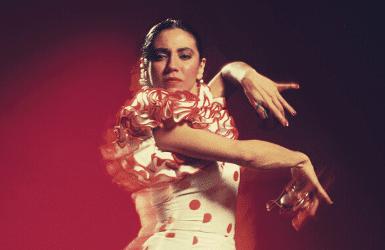 flamenco shows barcelona spain