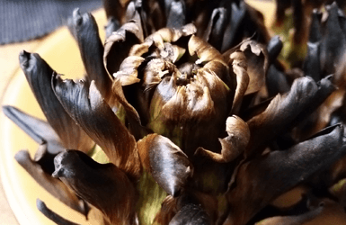Catalan Food: baked artichokes