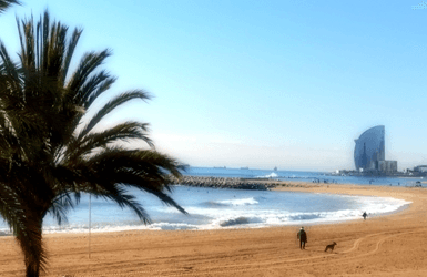 Barcelona Beach Hotel: the W