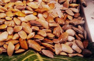 Types of Shellfish in Spain: Tellins