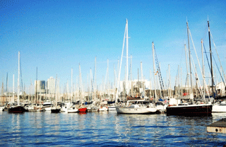 Barcelona Watersports at the Port Vell Marina