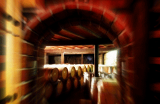 Spanish Wine Country: at the cellars