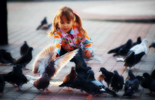 Things to do in Barcelona with kids: Feeding the doves