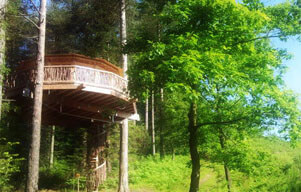 €2000 investment to support a new project of a tree-house hotel in the Basque Country.