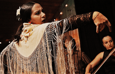 The Barcelona night: Flamenco shows