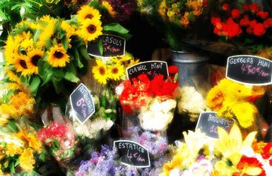 outdoor markets in Barcelona: flower market in La Rambla