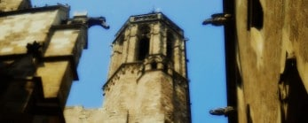 Gothic Quarter & Old Town Tour Image