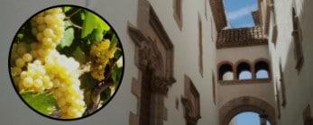 Sitges & Wine Tour Image