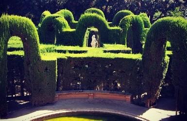 Maze in the neighborhood of horta