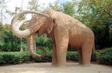 Ciutadella Park Mammoth