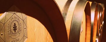 Wine barrels in Priorat